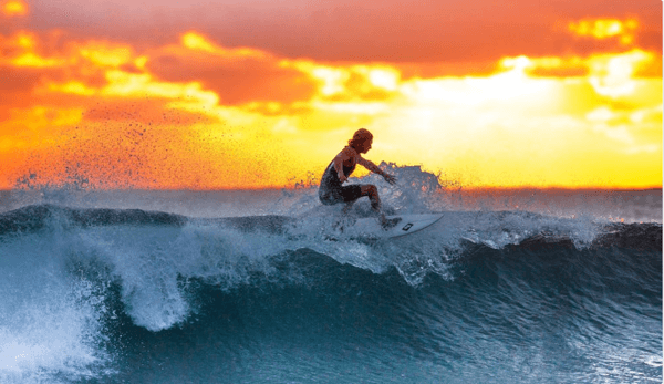 How to surf the waves of digital disruption to success
