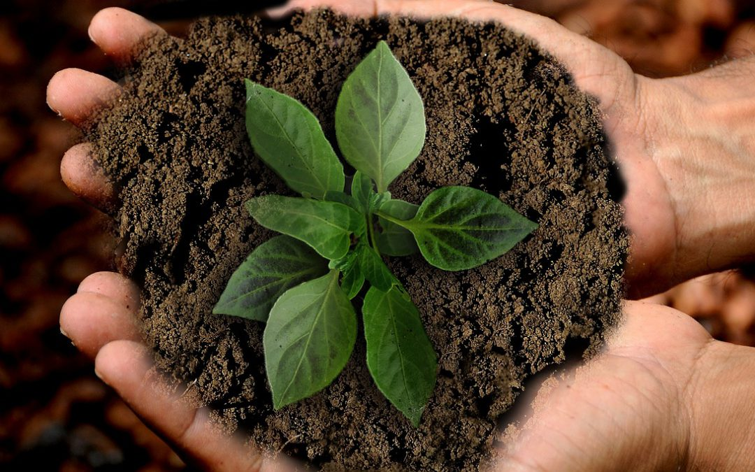 behalen-duurzame-doelen-grouve
